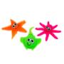 Jeux - Animaux de mer